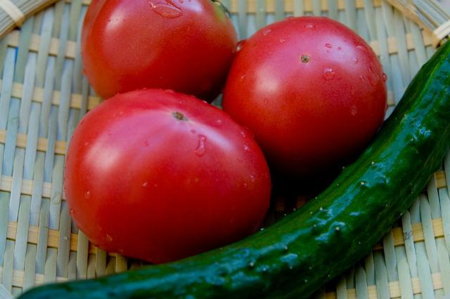 有機野菜(トマト・きゅうり)