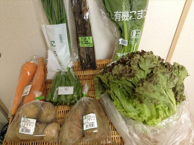 有機野菜の宅配「ビオマルシェ」多菜セット